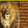 NUESTRA INCAPACIDAD Y LA GRACIA DE DIOS
