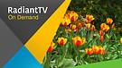 RadiantTV Episode 170504