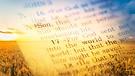 The True Gospel and No Fake News - P...